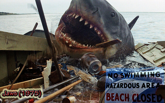 The Success of JAWS