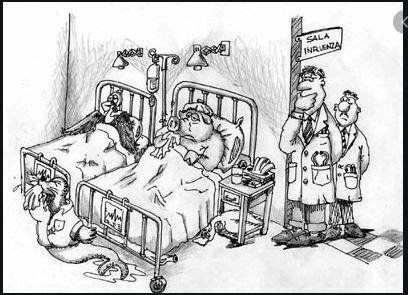 Epidemia de influenza o mejor fiebre muculosa  de las Montañas Rocosas