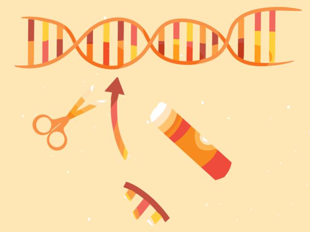 Aplicación de la Terapia génica y el Proyecto Genoma Humano