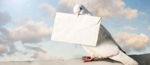Las palomas mensajeras