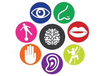 Stade d'enfance (0-12 ans) développement sensorielle