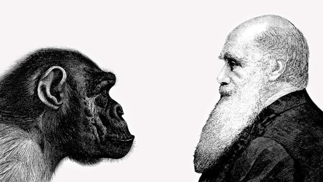 La Evolución Darwiniana