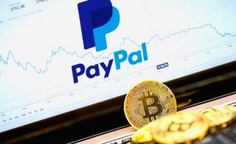 PayPal y Dinero digital