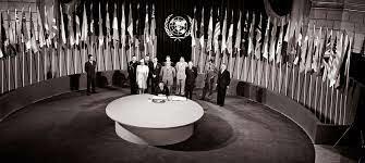 Fundación Organización Naciones Unidas