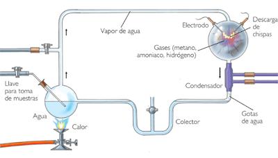 Teoria d'Oparin i Haldane, origen de la vida: química