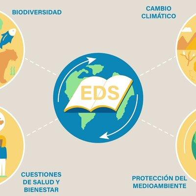 LÍNEA DE TIEMPO DE LA EDUCACIÓN PARA EL DESARROLLO. timeline