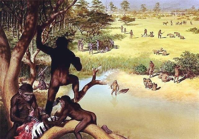 1st hominids   23:53