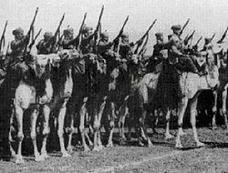 Victoria de los Aliados en el norte de África