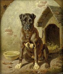Historia del Hombre Que Se Convirtio en Perro
