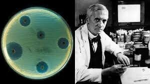 Los antibióticos y la ingeniería genética