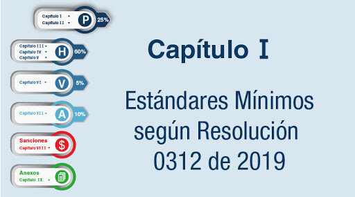Resolución 0312