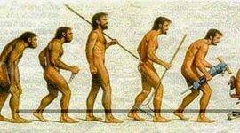 EVOLUCIÓN DE LA ADMINISTRACIÓN timeline