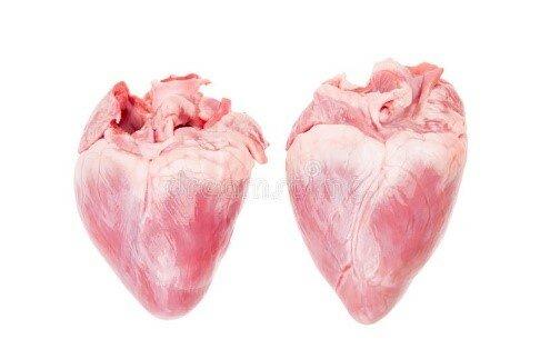 Transplante de corazón de de cerdos