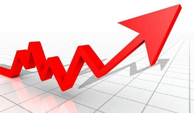 Tercer aumento registrado en el uso de semillas GM