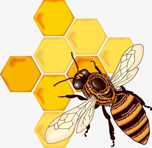 """Etymological story """"Bee"""""""