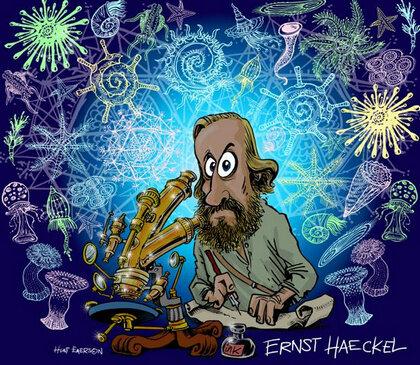 ORIGEN del termino Ernst Haeckel