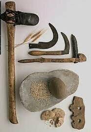 Descobriment d'eines de pedra