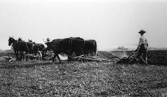 Début de la crise agricole