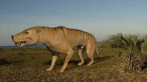First dinosaurs and mammals