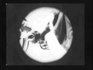 A través del telescopio
