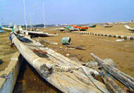 Tsunamis destroyed tens of thousands of fishing boats