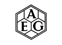 Caso AEG
