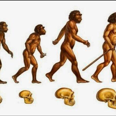 El proceso de hominización (por: Jackson Batista) timeline