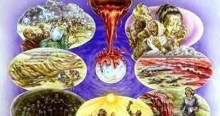 Moisés se hace escuchar por el faraón, y como este se niega a sus peticiones Dios libera las 7 plagas