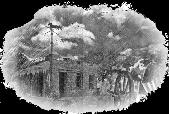 nicolas vila