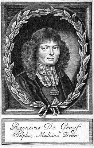 Regnier  De Graaf (holandés, 1641-1673)