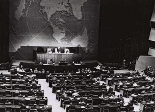 ONU (Organização das Nações Unidas): Declaração Universal dos Direitos Humanos