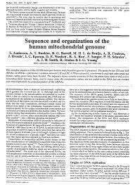 Secuenciación de un genoma mitocondrial humano (S. Anderson, S. G. Barrell, A. T. Bankier)