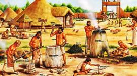 HISTORI A DE LA FARMACOLOGIA timeline