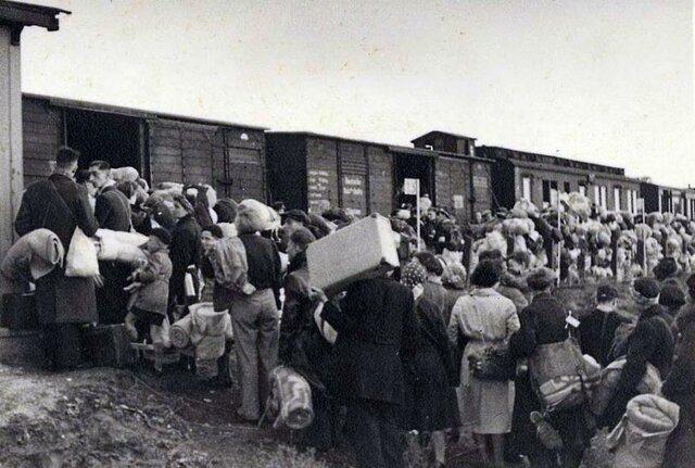 Deportació dels jueus