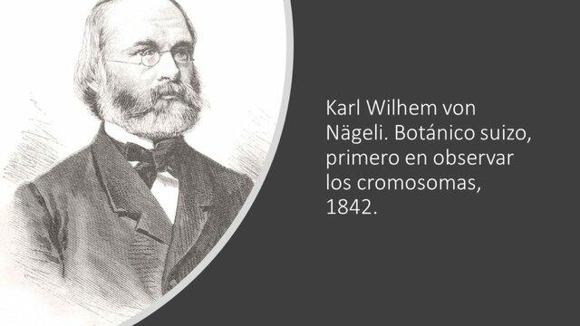 Karl Wilhem von Nágeli