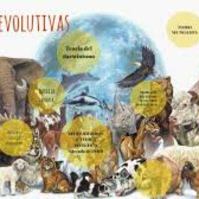 Teorías Evolutivas  timeline