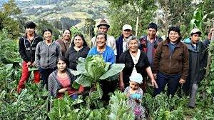 Decreto 327 de 2007-Comunidades rurales y campesinas