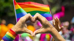Sentencia C-075/07 LGBTI