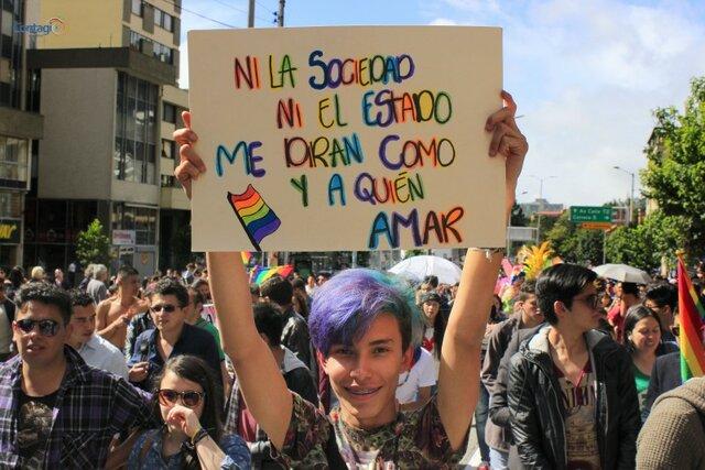 Sentencia C-283/11 LGBTI