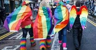Sentencia T-314/11 LGBTI