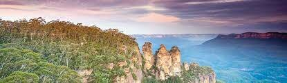 Discovery in the Blue Mountains.