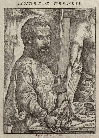 Vesalio publica De humanis corporis fabrica