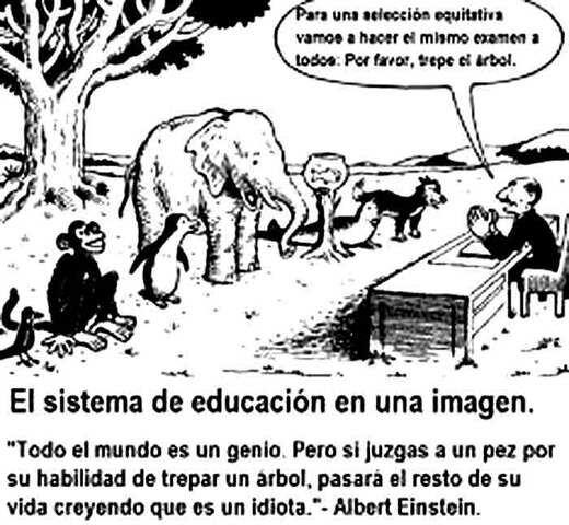 Educación desigual para el país