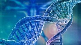 Historia formal del Proyecto del Genoma Humano timeline