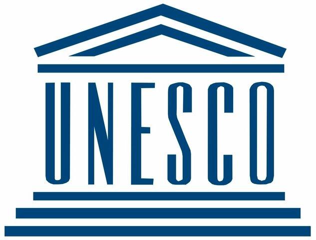 DEFINICIÓN DE LA UNESCO