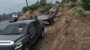 Allanamiento PDI de Temucuicui emplea récord de policías en 30 años, para apenas 1.000 matas de marihuana