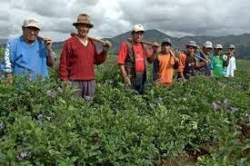 Comunidades Rurales y Campesinas