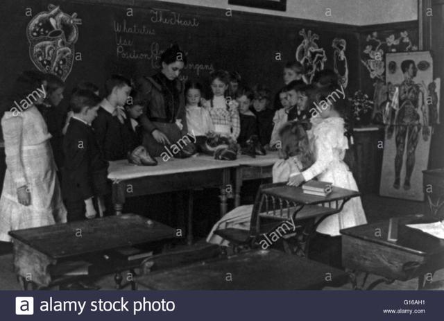 Proporción en escuelas de niñas y niños.