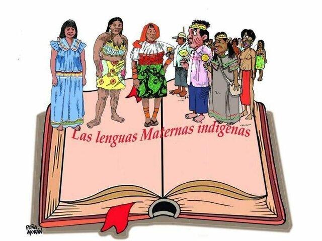 Educación propia para los indígenas y reconocimiento de la educación especial