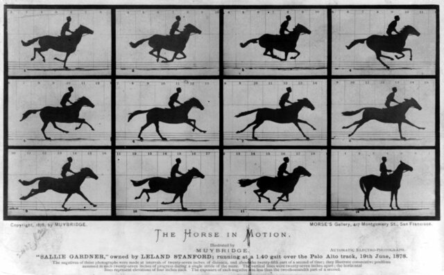 Fotografia del movimento, E. Muybridge